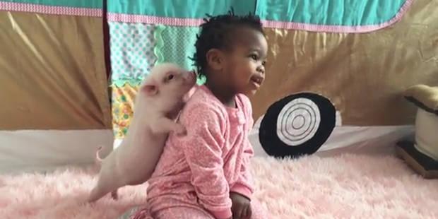 Une petite fille et son ami à quatre pattes.